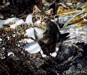 tigger as a kitten